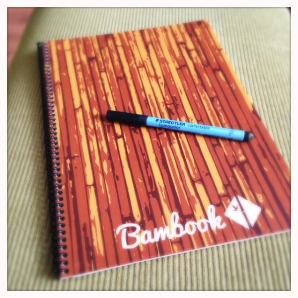 visueel notuleren, whiteboard notitieboek