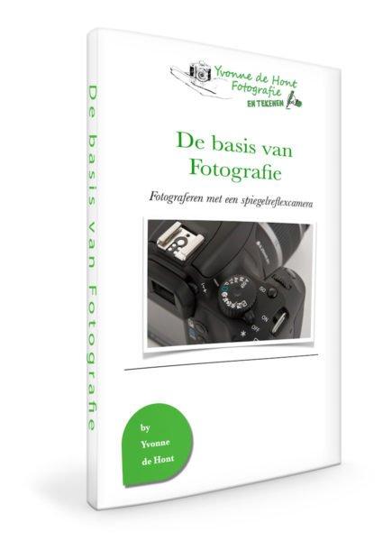 workshop de basis van fotografie: fotograferen met je spiegelreflexcamera
