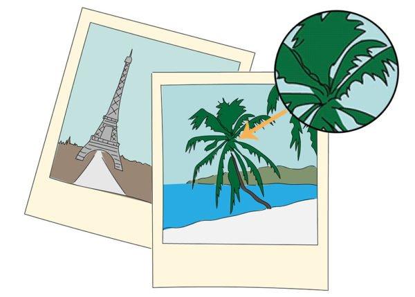 Wat is het verschil tussen pixel- en vectorafbeeldingen?