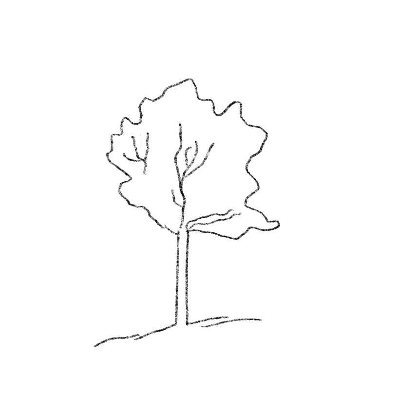 Leer beter tekenen met 7 manieren van kijken